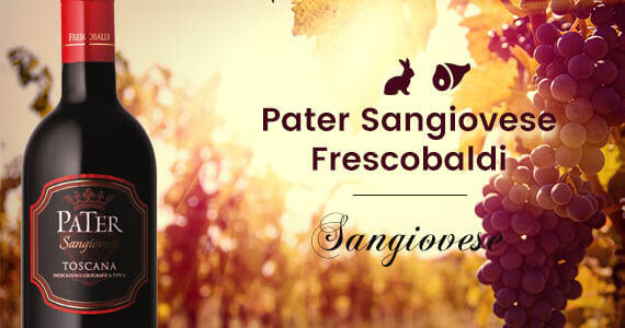 Wino czerwone Pater Sangiovese Frescobaldi